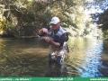pêche à la mouche sur la Thur